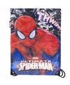 Spiderman gymtas 40 cm